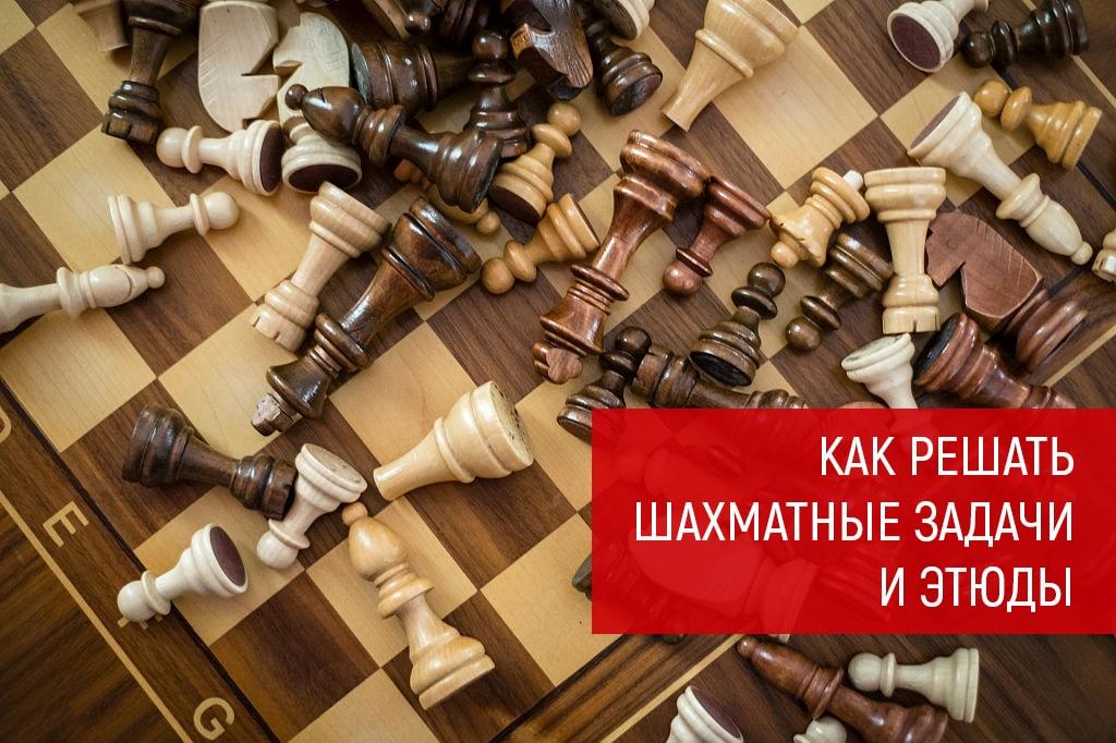 Как решать шахматные задачи и этюды